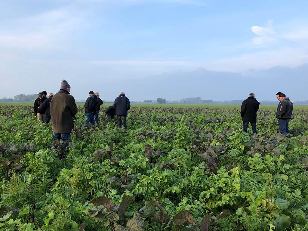 Bedrijfsbezoek | Niet-kerende grondbewerking goed voor natuur en bodem