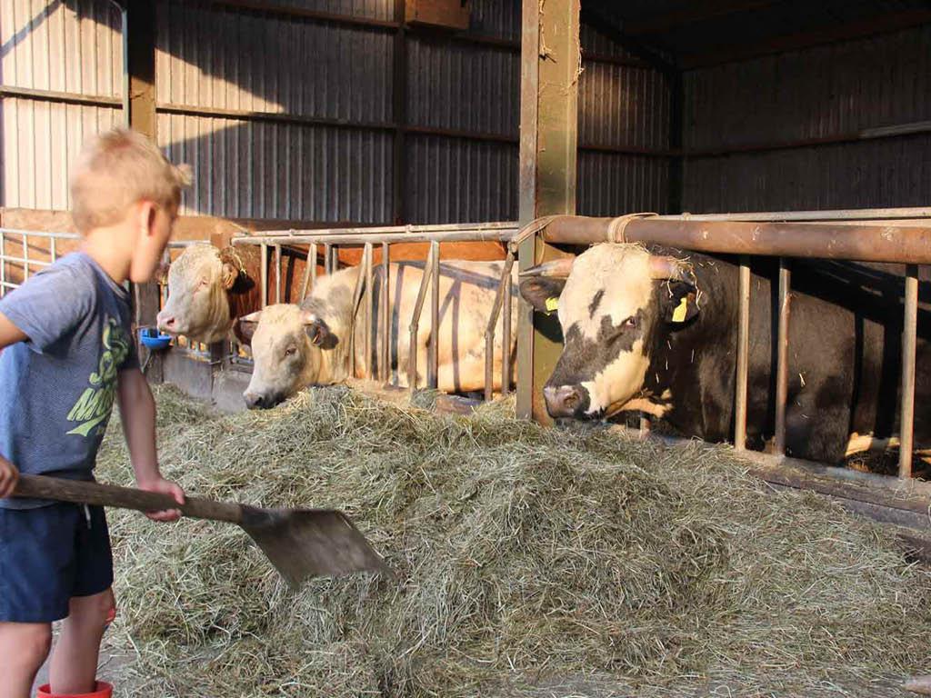 Onze boeren | BIO in de polder